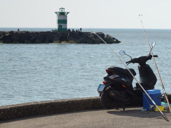 ZIP beim angeln in Den Haag