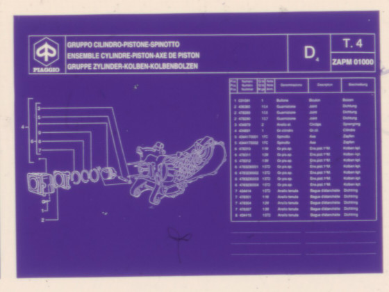 Bildausschnitt aus dem 3600dpi Dia Scan vom Mikrofich